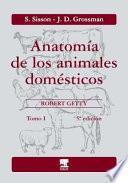 Anatomia de los animales domesticos t.1