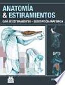 ANATOMÍA & ESTIRAMIENTOS. Guía de estiramientos. Descripción anatómica (Color)