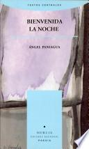 Bienvenida la noche (1988-1995)
