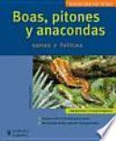 Boas, pitones y anacondas