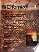 Chamizal