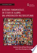 Derechos fundamentales en estado de alarma: Una aproximación multidisciplinar.