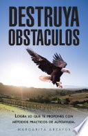 Destruya Obstaculos