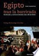 Egipto tras la barricada : revolución y contrarrevolución más allá de Tharir