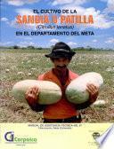 El Cultivo de la Sandia O Patilla (citrullus Lanatus) en El Departamento Del Meta