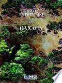 El maíz en el estado de Oaxaca