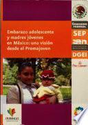 Embarazo adolescente y madres jóvenes en México
