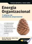 Energía organizacional