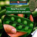 How Peas Grow/como Crecen Los Guisantes