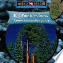 How Pine Trees Grow/