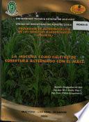 La Mucuna como cultino de cobertura alternado con el maiz