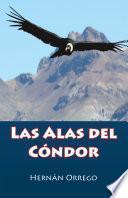 Las Alas Del Cóndor