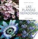 LAS PLANTAS TREPADORAS