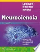 LIR. Neurociencia