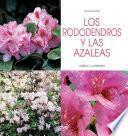 Los rododendros y las azaleas - Cultivo y cuidados