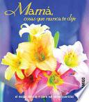 Mama, cosas que nunca te dije/ Mother, Things I Never Said To You