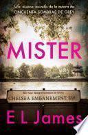 Mister (En español)