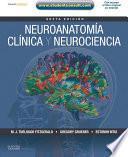 Neuroanatomía clínica y neurociencia + StudentConsult