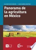 Panorama de la agricultura en México