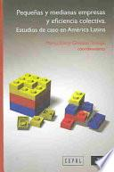 Pequeñas y medianas empresas y eficiencia colectiva