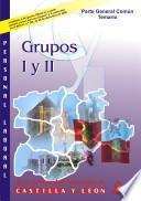 Personal Laboral de la Comunidad Autonoma de Castilla Y Leon. Grupos i Y Ii. Temario de la Parte General Comun