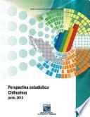 Perspectiva estadística. Chihuahua 2013