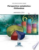 Perspectiva estadística. Chihuahua 2014