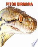 Pitón birmana