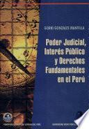Poder judicial, interés público y derechos fundamentales en el Perú
