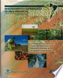 Realineamiento estratégico de PROCITROPICOS. Plan Director: 2002-2005. Consolidando la cooperación técnica recíproca para el desarrollo sostenible de los Trópicos Suramericanos