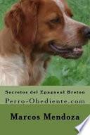 Secretos Del Epagneul Breton