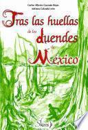 Tras las huellas de los duendes de México