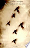 Un camino en el aire, 1974-1993